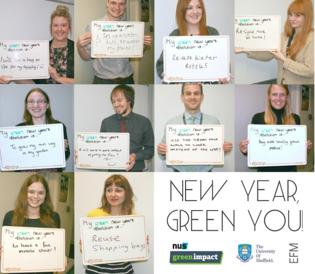 The Corporate Affairs team share their Green New Year's resolutions!
