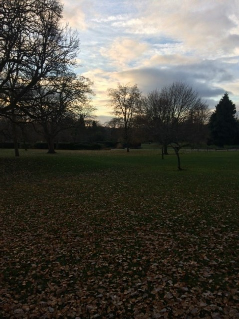Botanical Gardens – on my walk to work